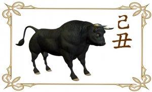 Январь 2021. Астрологический прогноз, китайская астрология  бацзы